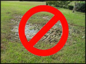septic-system-over-flow-problem-york-pa